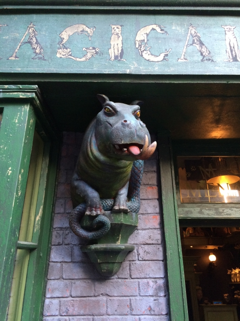 The Magical Creatures Shop in Diagon Alley